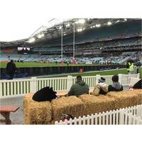 NRL Rural Aid Experience - Cronulla Sharks First Home Final4