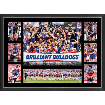 WESTERN BULLDOGS 2016 PREMIERS TRIBUTE FRAME