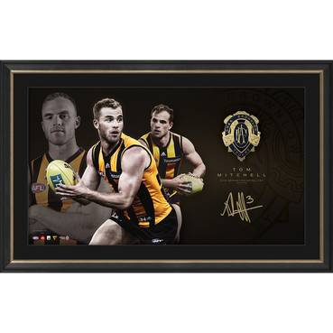 Tom Mitchell 2018 Brownlow Medal Display
