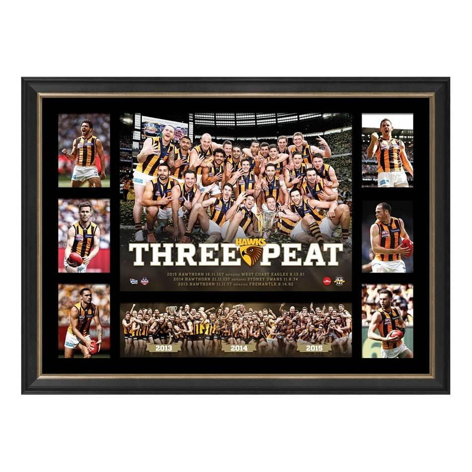 mainHAWTHORN PREMIERS TRIBUTE FRAME 'THREE-PEAT'0