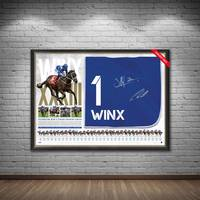 Winx Dual Signed Saddlecloth Display1