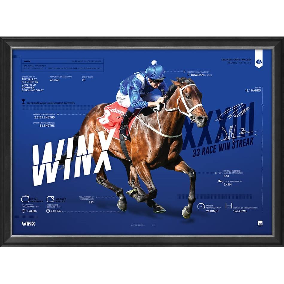 mainWinx Infographic Sportsprint0