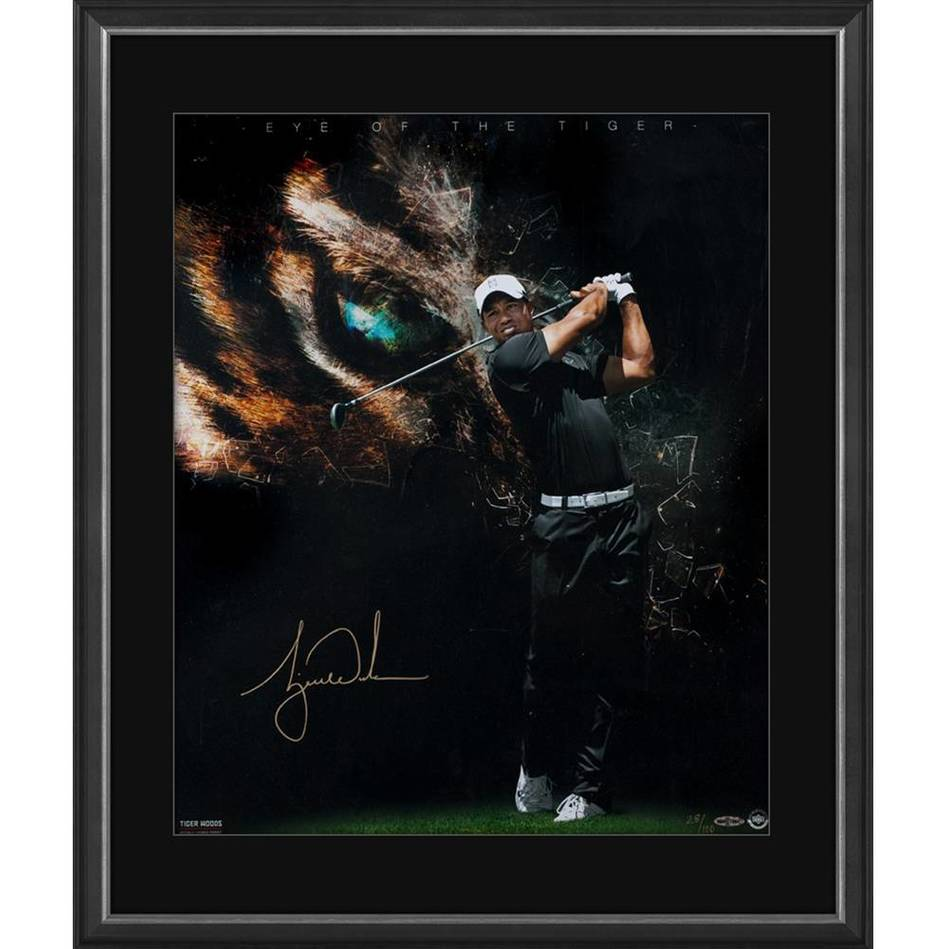 mainTIGER WOODS SIGNED 'EYE OF THE TIGER'0