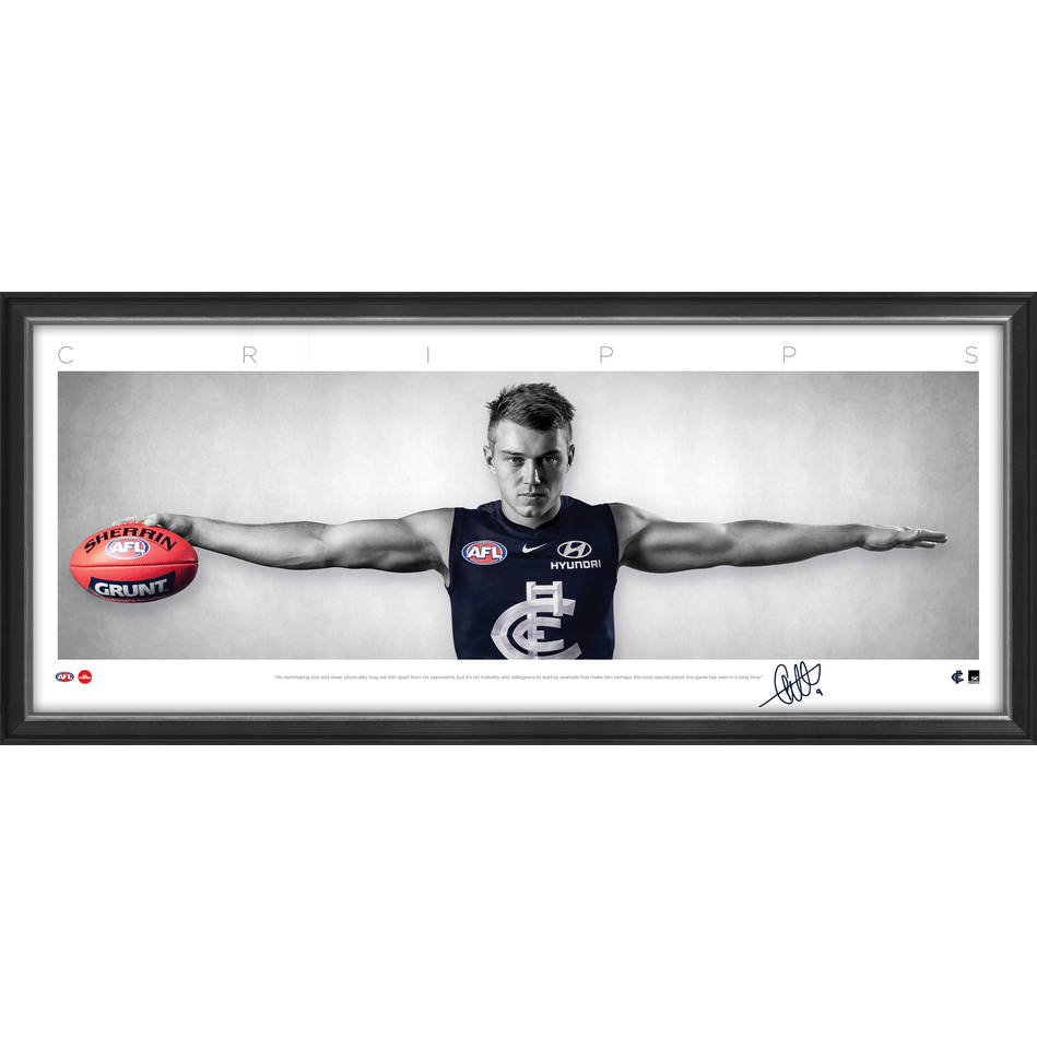 mainPatrick Cripps Mini Wings2