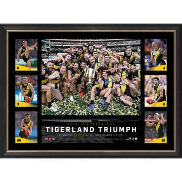 Richmond 2019 Premiers Tribute Frame