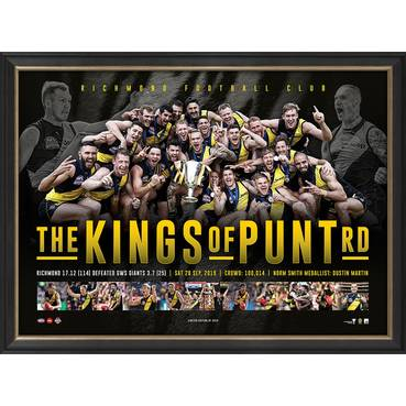 Richmond 2017 & 2019 Premiers Dual Team Signed Jumper Display