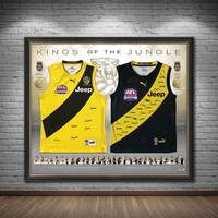 Richmond 2017 & 2019 Premiers Dual Team Signed Jumper Display1
