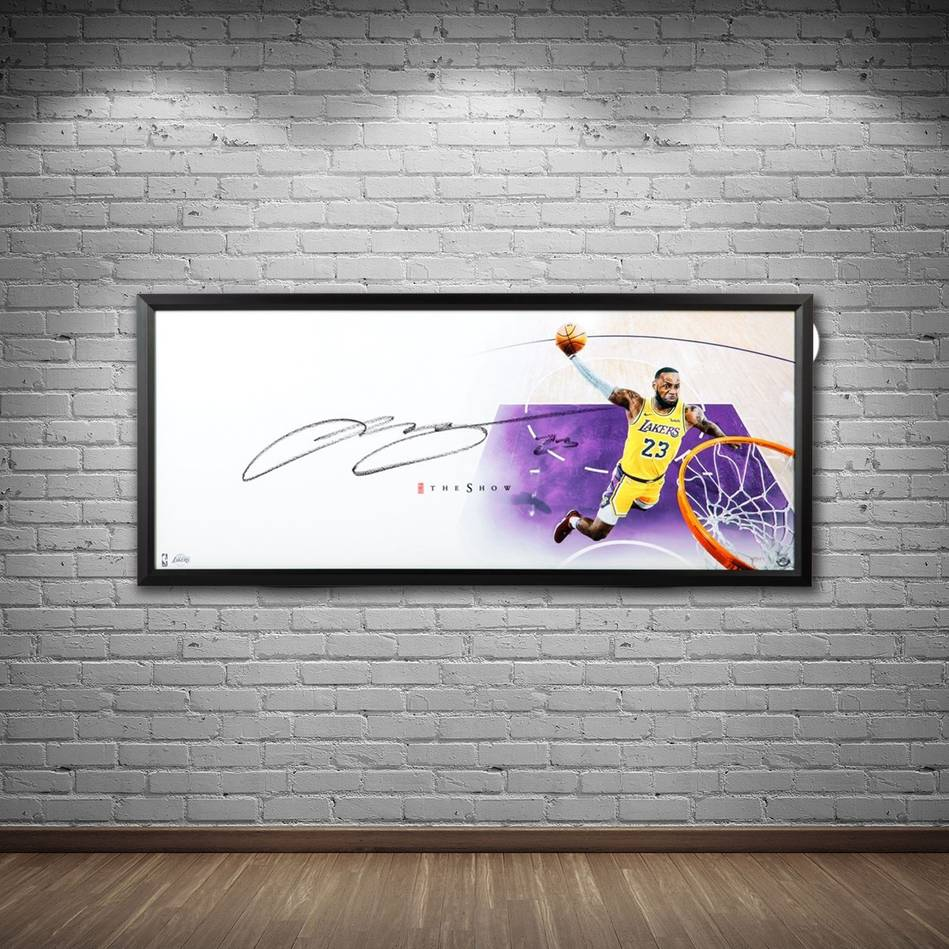 LeBron James Signed 'The Show'1