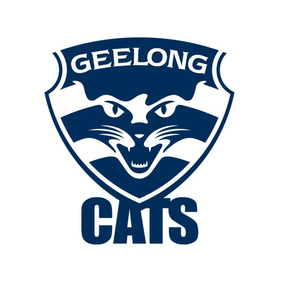 mainMelissa Hickey Signed Geelong Cats Guernsey0