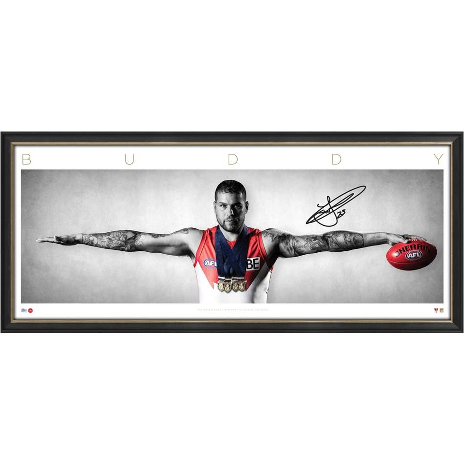 mainBuddy Franklin Signed Wings0