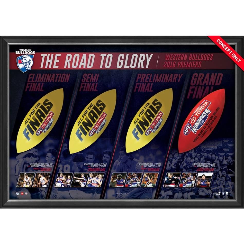 mainWestern Bulldogs 2016 AFL Premiers Match-Used Ball Panel Display0