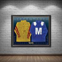 Cox Plate 100 Dual Signed Silks Display1