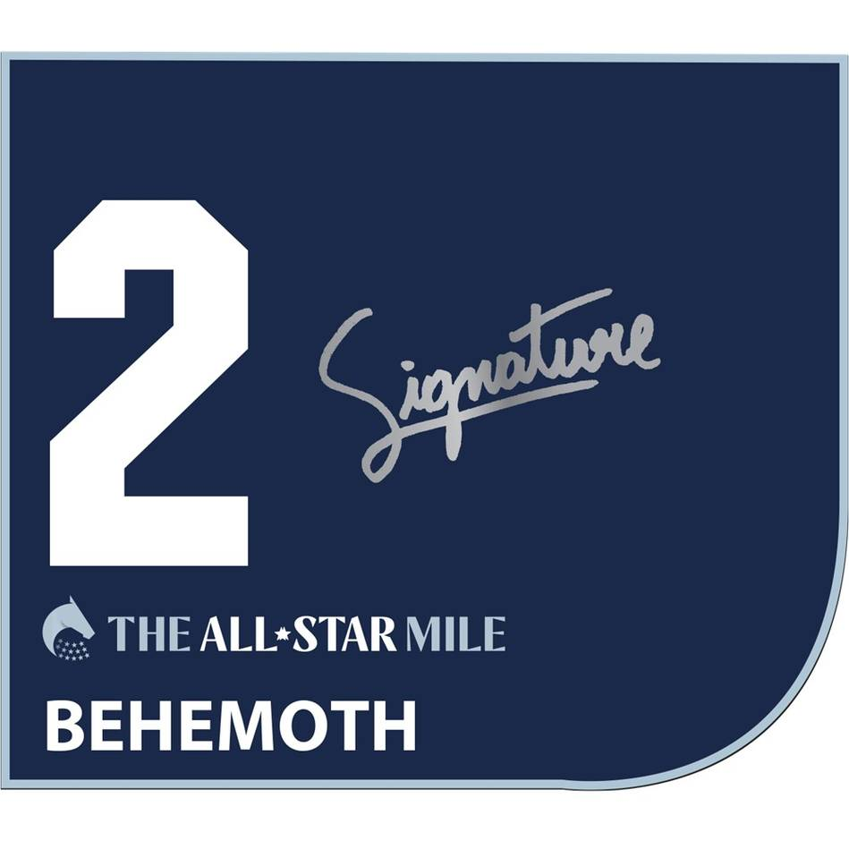 mainBehemoth – Craig Williams Signed Saddlecloth0