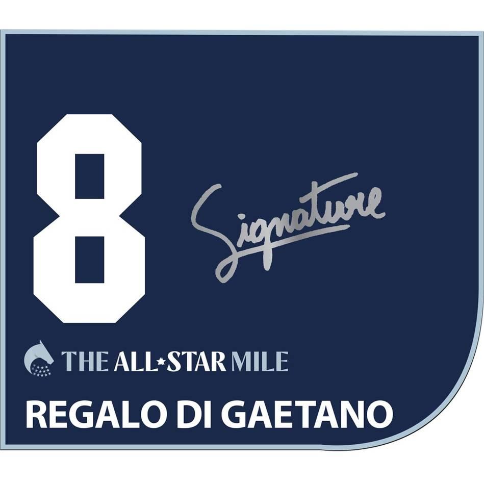 mainRegalo Di Gaetano – Luke Nolen Signed Saddlecloth0