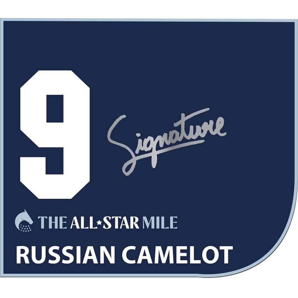 mainRussian Camelot – Damien Oliver Signed Saddlecloth0
