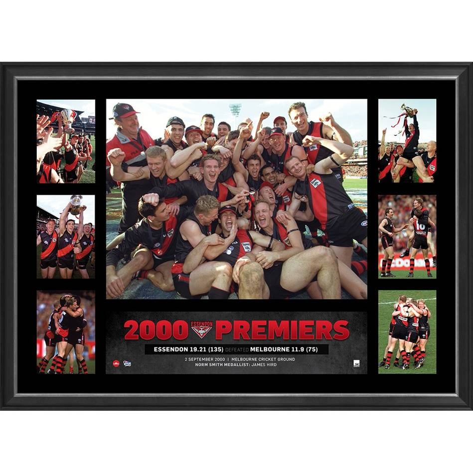 mainESSENDON 2000 PREMIERS TRIBUTE FRAME0