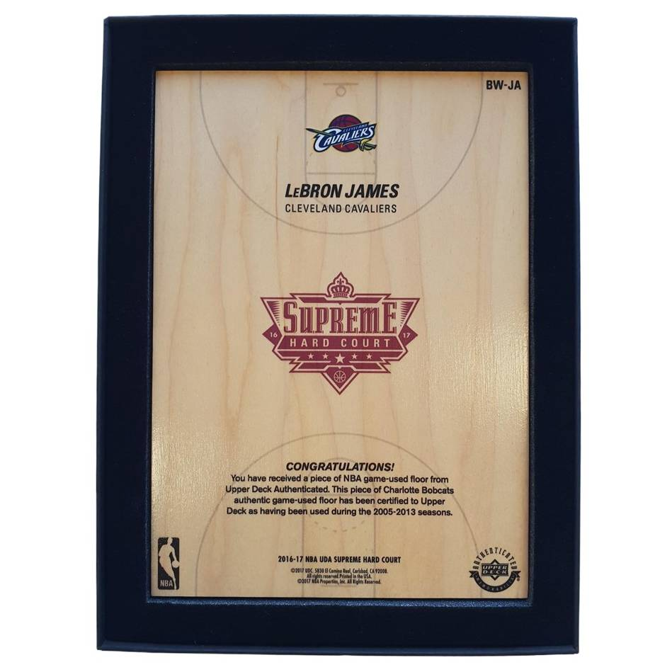mainLeBron James NBA Supreme Hard Court Piece1