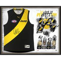 DUSTIN MARTIN SIGNED 'SEASON OF PERFECTION'0